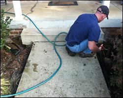Dead animal removal Burke VA