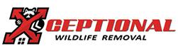 Burke Wildlife Removal